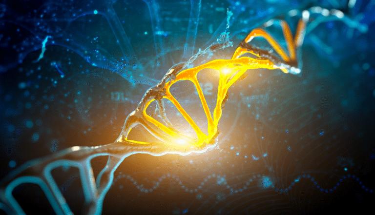 Adelaide DNA Testing